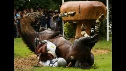 Funny Horse Riding Fails 7 High Resolution Wallpaper Wallpaper 791
