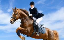 Horse Riding Wallpapers | HD Wallpapers 1040
