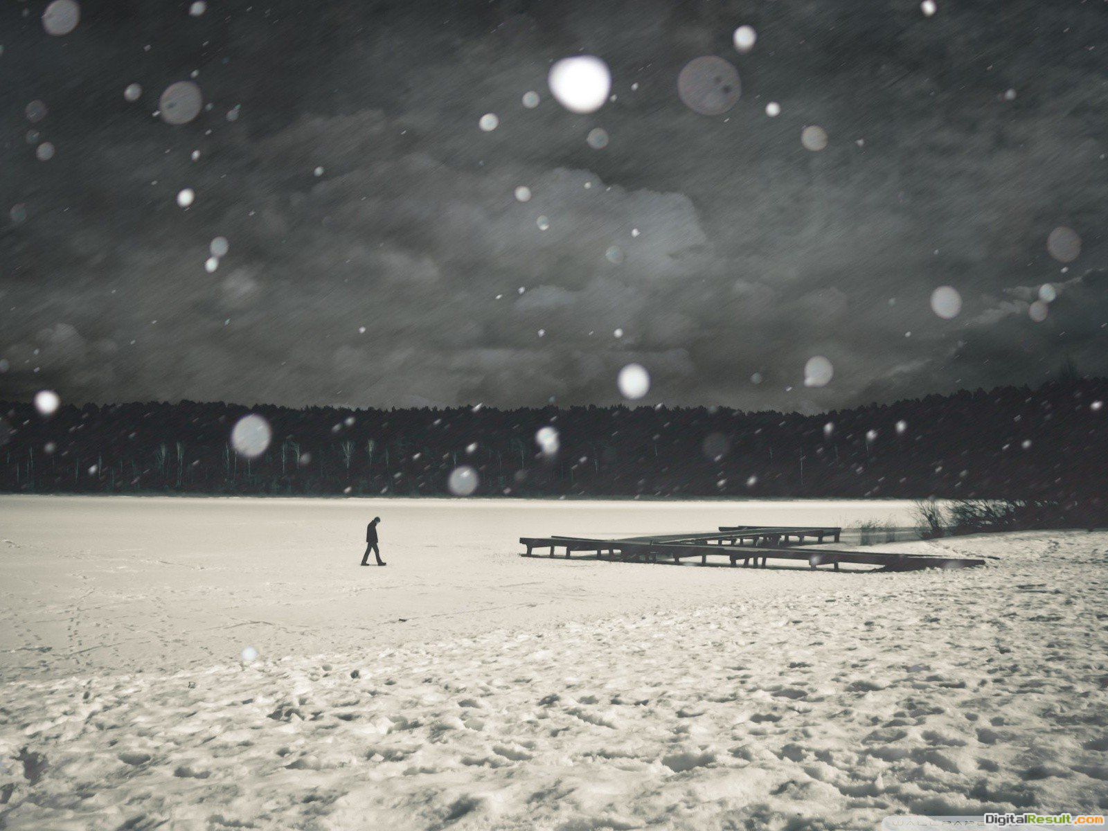 Winter love lonely love quotes wallpaper | 1600x1200 | 237607 792