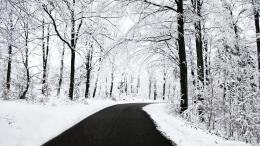 Winter Path HD WallpapersHD Wallpapers Backgrounds of Your Choice 410