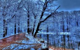 Frozen Walking Path In Winter Hdr Hd Wallpaper | Wallpaper List 643