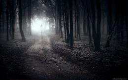 Wallpaper Girl Walking Alone in Forest Path Lonely Sad wallpaper 1084