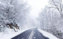 Lonely Winter Wallpaper lonely winter forest wallpapers and images 937