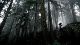 Mountain bike wallpaperSport wallpapers# 1375