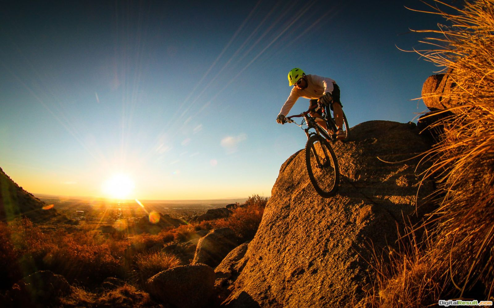 Cyclist With Mountain Bike On Hills 2013 Hd Desktop Wallpaper ~ C a T 1411