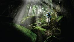 Mountain biking wallpaper #15739 1375