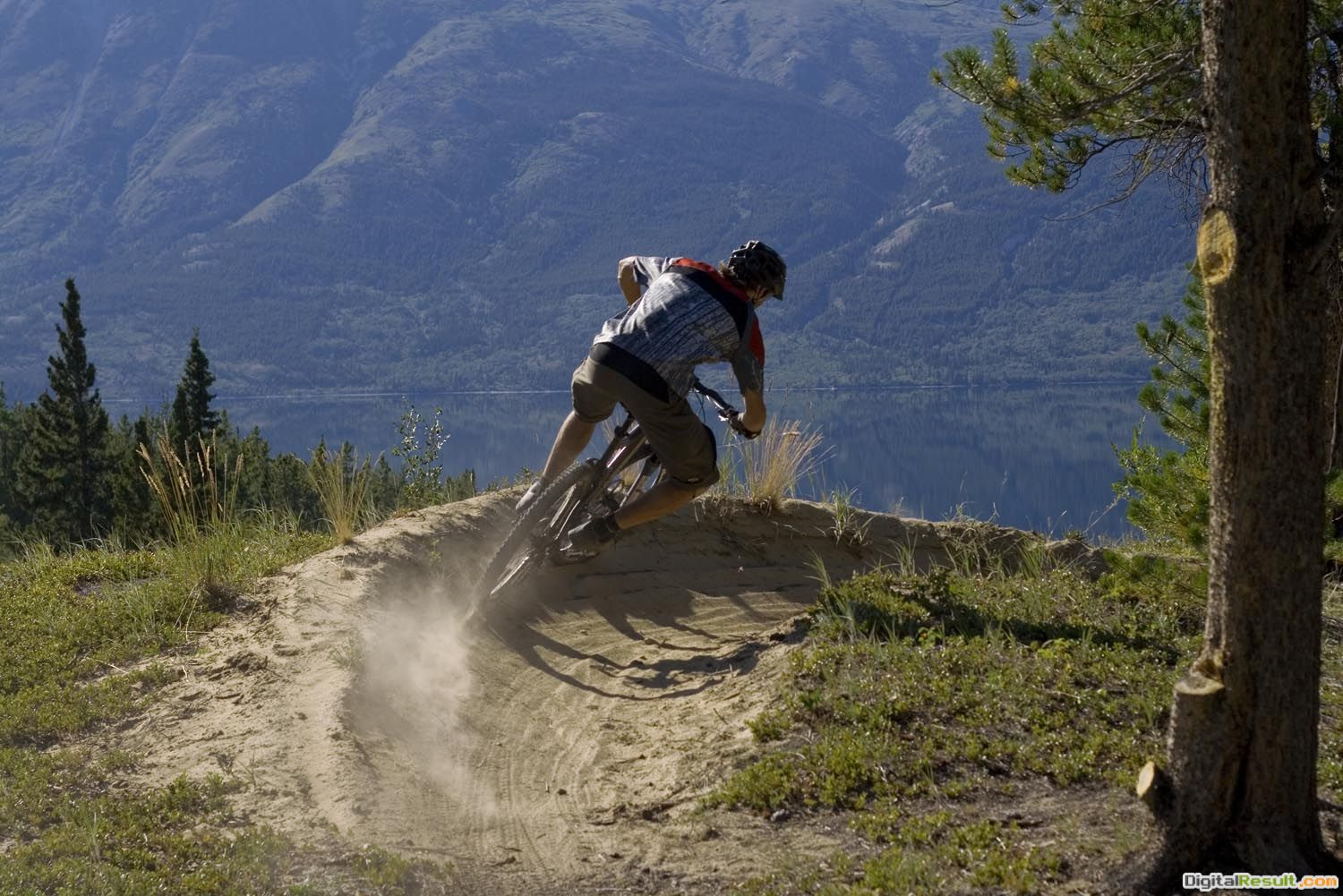 Pics PhotosDownhill Mountain Bike Wallpaper Hd 1847