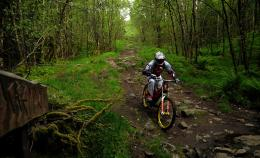 Downhill Mountain Bike Wallpaper 2015Walls HD Soccer 500