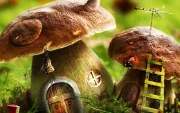 Mushrooms House wallpapers | Mushrooms House stock photos 115