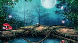 Magical forest lake butterfly art mushroom wallpaper 1565