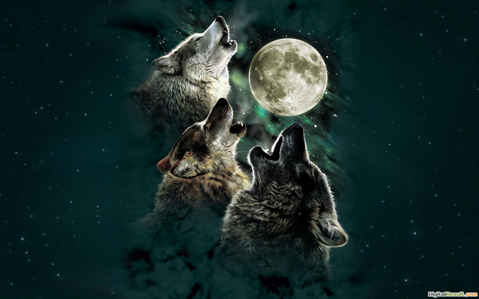 January: The Full Wolf Moon | Dana\'s Sanctuary 1836