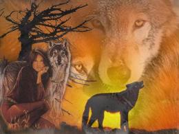 Wolf Spirit Native American Tree Lady Dogs hd wallpaper #1861833 1333