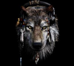 Indian And Wolf Wallpaper Wolf wallpaper 10192983 304