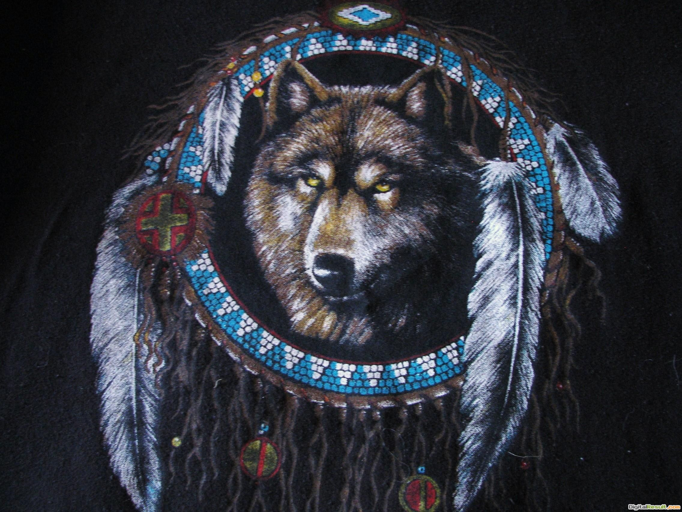 Native American WolfDesktop hd native american wolf pictures 730