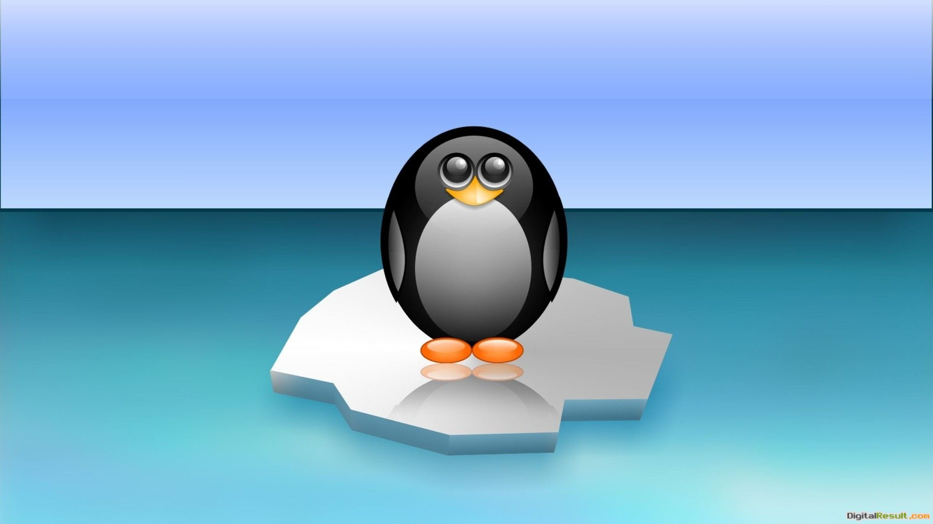 Penguin Wallpaper 285