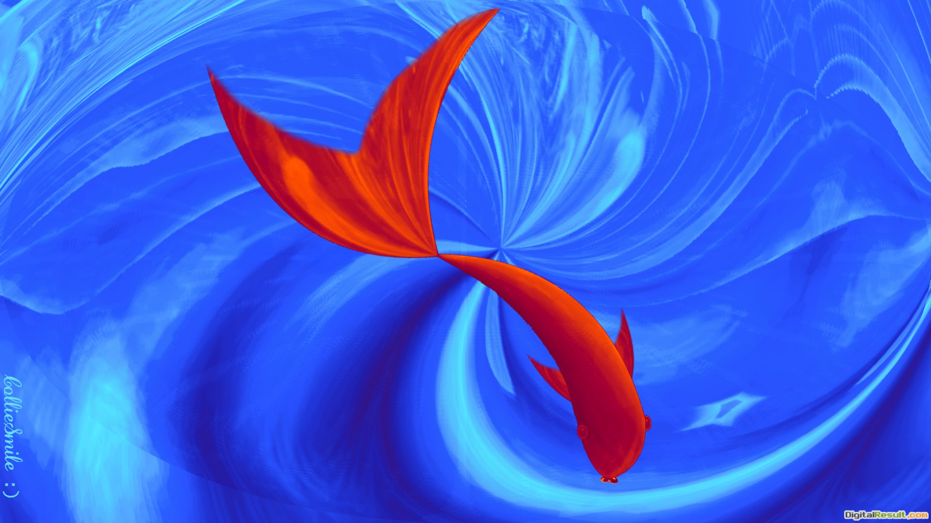 Red fishswirly water blue whale HD Wallpaper 479