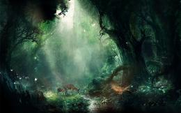 the magic forest wallpapers and imageswallpapers, pictures, photos 1460