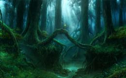 Magic forest wallpaper #18410 683