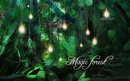 Magic forest by Kaylina on DeviantArt 405