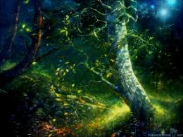 Magic Dark Forest Wallpapers1024x768 pixelPopular HD Wallpaper 661