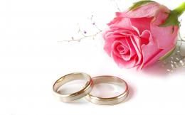 love wedding pink rose rings backgrounds powerpoint HD Wallpapers 869