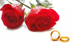 Wedding Ring and Flower Rose Wallpaper HD 14 High Resolution Wallpaper 1581