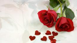 Red Rose Wedding Wallpapers, Rose Flower images, Rose Pictures and 638