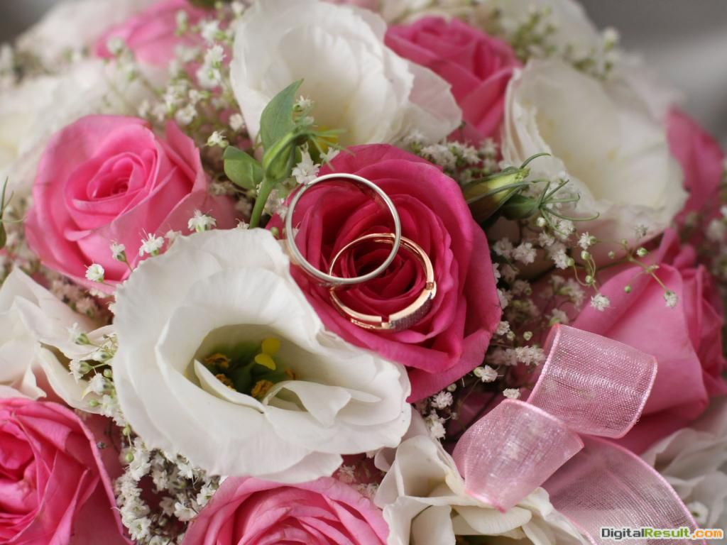 Free Wallpaper Red Roses With Wedding Ring Bouquet for Desktop 901