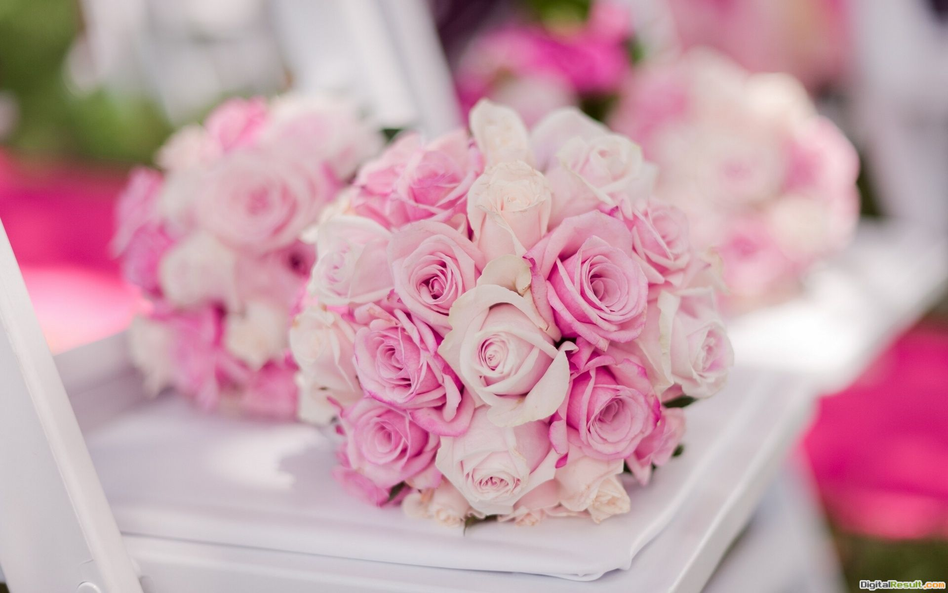 Wedding bouquet buds roses bokeh wallpaper | 1920x1200 | 135961 1497