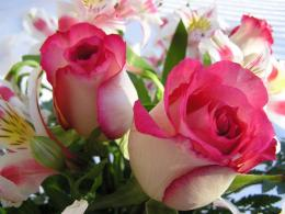 Beautiful Bouquet With Roses Wallpaper 1484