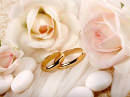 White Roses and Wedding Rings Wallpaper | HD Desktop Wallpaper 1024
