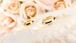 Rings, Wedding, Gold, Glitter, Fabric, Flower, Rose Wallpaper 1889