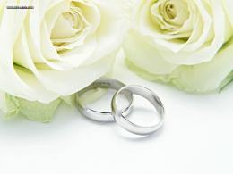 Speter images Wedding Rings And Roses HD wallpaper and background 1311