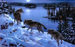 winter, landscape, nature, wallpaper, lake, moon, cartoons, wolves 1533